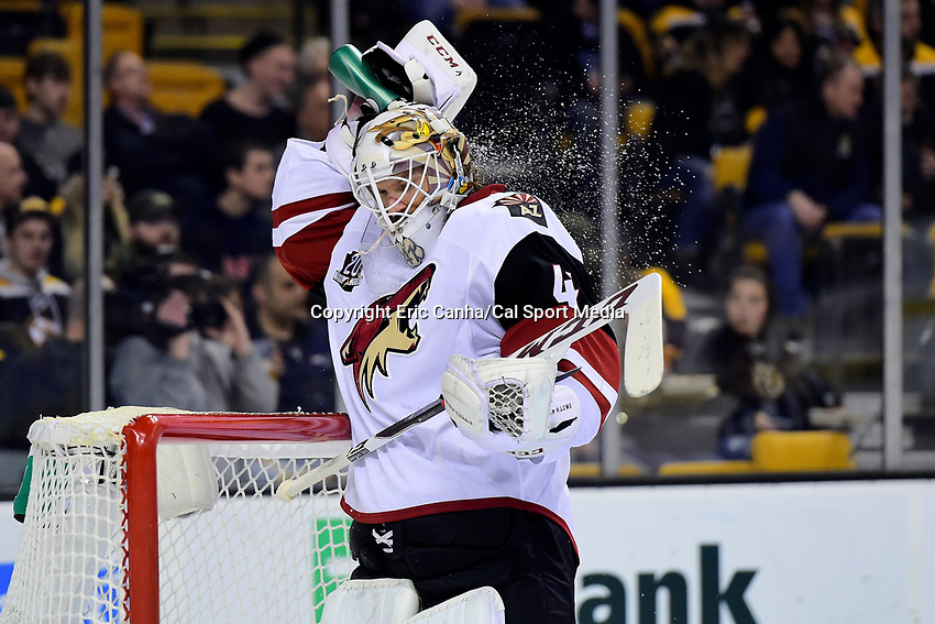 Tuesday, February 28, 2017: Arizona Coyotes goalie Mike Smith (41) cools off during the National Hockey League game between the Arizona Coyotes and the Boston Bruins held at TD Garden, in Boston, Mass. Boston defeats Arizona 4-1. Eric Canha/CSM