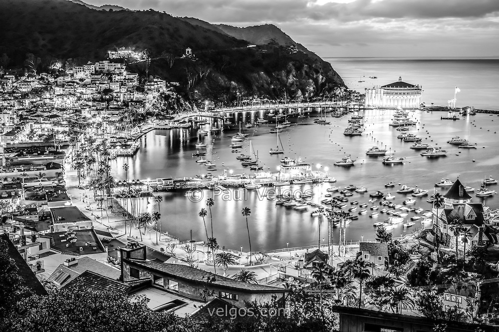 Catalina Island Avalon Bay Black and White Picture   Buy