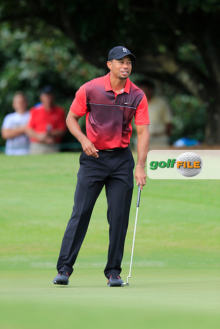 Tiger Woods (USA) during round 4 of the Hero World Challenge, Isleworth Golf &amp; Country Club, Windermere, Orlando Florida, USA. 07/12/2014<br /> Picture Fran Caffrey, www.golffile.ie