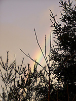 Rainbow so close I felt I could reach up and touch it