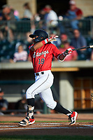 Billings Mustangs Quincy McAfee (19) at bat during a Pioneer League game against the Grand Junction Rockies at Dehler Park on August 15, 2019 in Billings, Montana. Billings defeated Grand Junction 11-2. (Zachary Lucy/Four Seam Images)