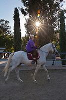 Julie's Horses - Reinstein Ranch - 2012