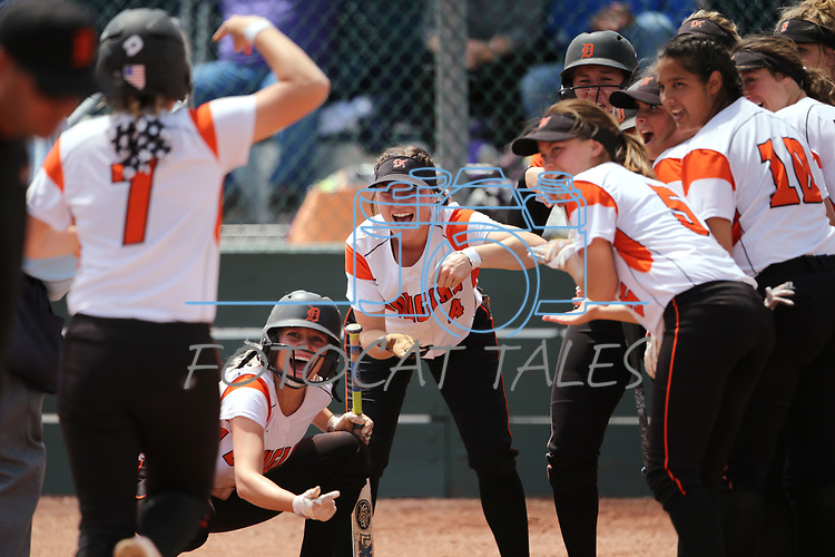 The Douglas Tigers greet Chloe Pratt at the plate after her home run against the Basic Wolves in first round action in the NIAA 4A softball tournament, in Reno, Nev., on Thursday, May 17, 2018. Douglas won 8-5. Cathleen Allison/Las Vegas Review-Journal