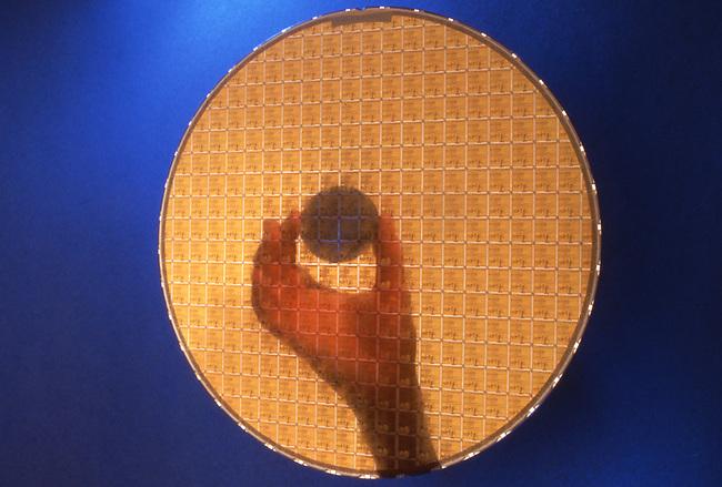 "Original Intel 4004 wafer (1971) reflected in 8"" pentium chips."