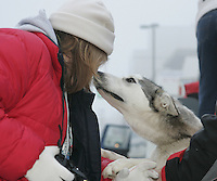 Race fan Becky Hovic gets a kiss from a William Hanes dog in the staging area prior to the Anchorage start of the Iditarod.