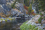 Idaho, South Central, Stanley. Middle Fork of the Salmon River on an autumn morning.
