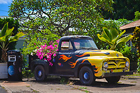 Colorful truck with flower garden in its trunk, Waimea, Kauai, Hawaii, USA