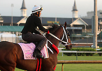 LOUISVILLE, KY - APRIL 27: Paola Queen (Flatter x Kadira, by Kafwain) gallops at Churchill Downs with exercise rider J.J. Delgado preparing for the Kentucky Oaks. Owner Grupo 7C Racing Stable, trainer Gustavo Delgado. (Photo by Mary M. Meek/Eclipse Sportswire/Getty Images)