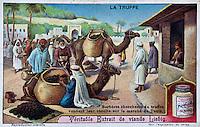 Europe/France/Aquitaine/24/Dordogne/Sorges: Musée de la Truffe, Sorges: Images sur le thème de la truffe éditées par la société Liebig _ Reproduction - Collection:  Musée de la Truffe, Sorges
