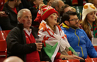 Welsh fans prior to kick off <br /> <br /> Photographer Ian Cook/CameraSport<br /> <br /> Under Armour Series Autumn Internationals - Wales v Tonga - Saturday 17th November 2018 - Principality Stadium - Cardiff<br /> <br /> World Copyright © 2018 CameraSport. All rights reserved. 43 Linden Ave. Countesthorpe. Leicester. England. LE8 5PG - Tel: +44 (0) 116 277 4147 - admin@camerasport.com - www.camerasport.com