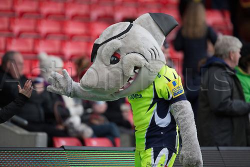 29.04.2016. AJ Bell Stadium, Salford, England. Aviva Premiership Sale Sharks versus Gloucester Rugby. The Sale mascot hi-fives a fan.