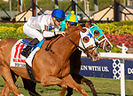 January 25, 2020: Spooky Channel #11 with jockey Julien Leparoux on board wins the W. L. McKnight Grade III Stakes during the Pegasus World Cup Invitational at Gulfstream Park Race Track in Hallandale Beach, Florida. Liz Lamont/Eclipse Sportswire/CSM
