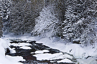 Stream Into Lac McDonald<br /> Lakeview<br /> Quebec<br /> Canada