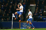 Scott Dann of Crystal Palace celebrates his opening goal - Everton vs Crystal Palace - Barclays Premier League - Goodison Park - Liverpool - 07/12/2015 Pic Philip Oldham/SportImage