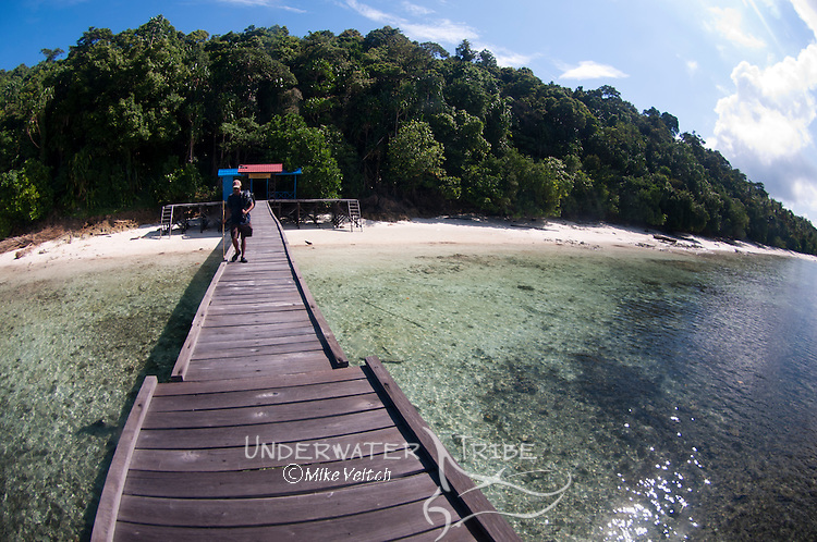 The welcoming pier at Jellyfish Lake, Jellyfish Lake, Kakaban Island, Berau, Kalimantan, Borneo, Indonesia, Pacific Ocean
