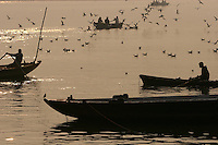 28.11.2008 Varanasi(Uttar Pradesh)<br /> <br /> Morning on ganga river(the best time to take a boat and have a look on the city).<br /> <br /> Matin sur le Gange(le meilleur moment pour prendre un bateau et voir la ville).