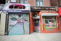 A mural of Purple Finches by Max Kaufman, part of the Audubon Mural Projects decorates a store gate in Washington Heights in New York on Sunday, February 21, 2016. The murals decorating the buildings and storefronts show climate threatened birds and are meant to create public awareness of the threats against the various species of birds. (© Richard B. Levine)