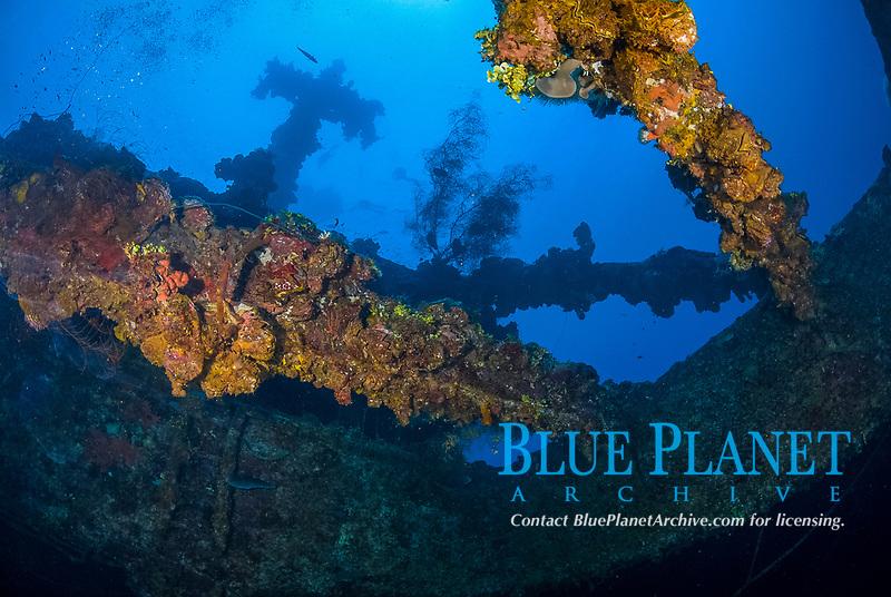 Mast, hold, soft corals, encrusted, superstructure, fish, Fujikawa Maru in Truk Lagoon, Operation Hailstone, Wreck, WWII, Japanese shipwreck, Chuuk, Micronesia, Truk, Chuuk Lagoon, Pacific Ocean,