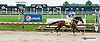 Ballymurphy winning at Delaware Park on 8/1/13