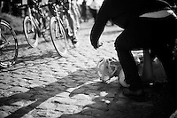 Alberto Bettiol (ITA/Cannondale) crashed on the cobbles of the Stationberg and bystanders try to shield him from the oncoming peloton<br /> <br /> E3 - Harelbeke 2016
