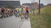 Peter Sagan (SVK/Tinkoff) choosing paved over cobbled (this time)<br /> <br /> 12th Eneco Tour 2016 (UCI World Tour)<br /> stage 4: Aalter - St-Pieters-Leeuw (202km)