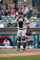 Charlotte Knights catcher Daniel Gonzalez (29) during an International League game against the Rochester Red Wings on June 16, 2019 at Frontier Field in Rochester, New York.  Rochester defeated Charlotte 3-2 in the second game of a doubleheader.  (Mike Janes/Four Seam Images)