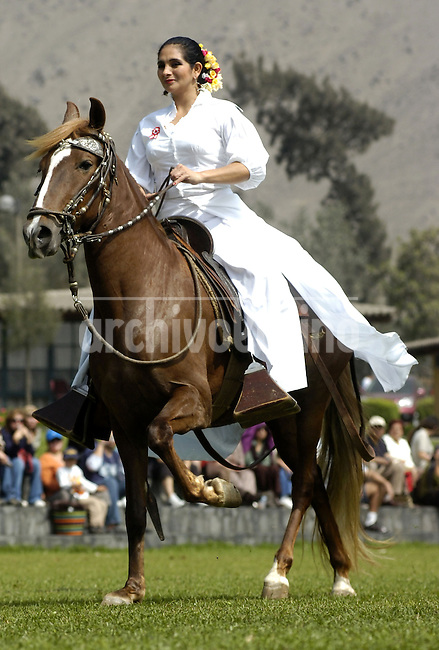 A woman rides a horse called 'Caballo de Paso Peruano' during an exhibition in Lima, Monday, July 28, 2008. The Peruvian Paso or Peruvian Hourse is a breed of light pleasure saddle horse known for its smooth gaits. It is distinguished by a natural, four beat, lateral gait called paso llano that is noted for its smoothness and harmony of movement.