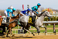 OZONE PARK, NEW YORK - APR 07: My Miss Lilly, #6, ridden by Joe Bravo, wins the Gazelle Stakes for 3 year old fillies, on Wood Memorial Day at Aqueduct Racetrack, on April 7, 2018 in Ozone Park, New York. ( Photo by Sue Kawczynski/Eclipse Sportswire/Getty Images)