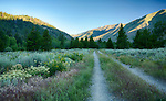 Idaho, South Central, Sun Valley. The Harriman Trail and Boulder Mountains in the morning light of summer.