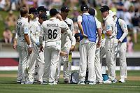 1st December 2019, Hamilton, New Zealand;  Drinks break. International test match cricket, New Zealand versus England at Seddon Park, Hamilton, New Zealand. Sunday 1 December 2019.