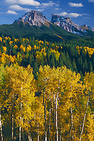 Aspens, Dunsinane and Precipice Peaks<br /> Owl Creek Pass<br /> Uncompahgre National Forest,  San Juan Mountains<br /> Rocky Mountains, Colorado