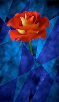 Digital illustration: red and yellow rose against a painted background/