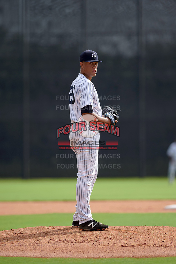 GCL Yankees East starting pitcher Tony Hernandez (26) gets ready to deliver a pitch during the first game of a doubleheader against the GCL Yankees West on July 19, 2017 at the Yankees Minor League Complex in Tampa, Florida.  GCL Yankees West defeated the GCL Yankees East 11-2.  (Mike Janes/Four Seam Images)