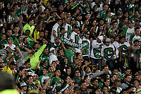BOGOTÁ - COLOMBIA, 11-01-2019: Hinchas de Atlético Nacional, animan a su equipo, durante partido entre Millonarios y Atlético Nacional, por el Torneo Fox Sports 2019, jugado en el estadio Nemesio Camacho El Campin de la ciudad de Bogotá. / Fans of Atletico Nacional, cheer for their team during a match between Millonarios y Atletico Nacional, for the Fox Sports Tournament 2019, played at the Nemesio Camacho El Campin stadium in the city of Bogota. Photo: VizzorImage / Luis Ramírez / Staff.