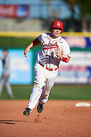 Ball State Cardinals Griffin Hulecki (13) running the bases during a game against the Louisville Cardinals on February 19, 2017 at Spectrum Field in Clearwater, Florida.  Louisville defeated Ball State 10-4.  (Mike Janes/Four Seam Images)