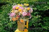 Carl, FLOWERS, photos, SWLA12031,#f# Blumen, Natur, flores, naturaleza