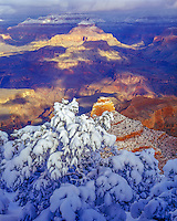 Heavy snow at Yaki Point, Grand CAnyon National Park, Arizona, SOuth Rim Colorado River below, April morning