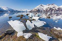 Stranded glacier icebergs along Harriman Fjord, northern Prince William Sound, Alaska.