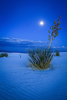 Blue Moon - New Mexico - White Sands National Monument