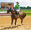 Balmer Hon winning at Delaware Park on 6/30/16