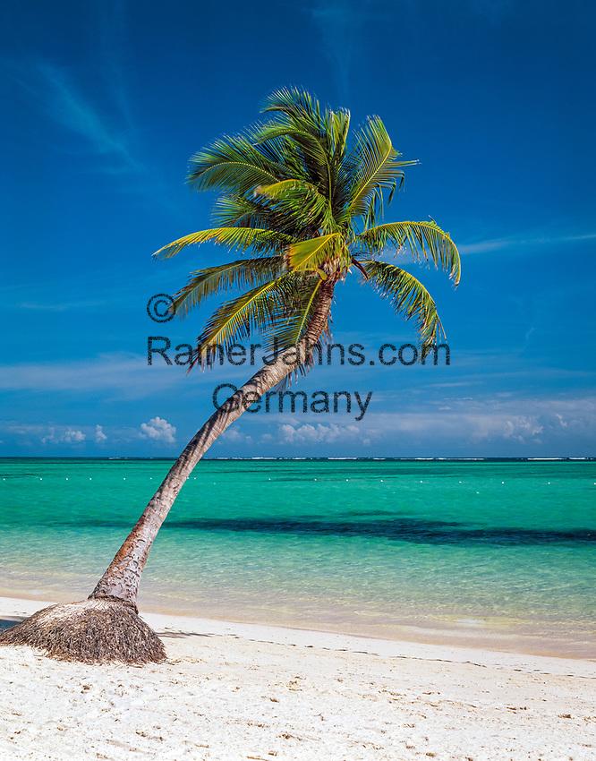 Dominikanische Republik, Punta Cana, Bavaro Beach: einzelne Palme am leeren Strand   Dominican Republic, Punta Cana, Bavaro Beach: single palm tree at secluded beach