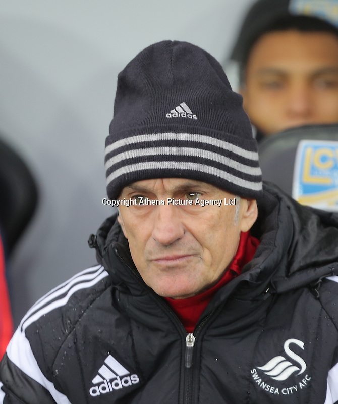 during the Barclays Premier League match between Swansea City and Crystal Palace at the Liberty Stadium, Swansea on February 06 2016