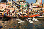 Along the waterfront of Varanasi, an ancient city on the Ganges river, the timeless tradition of gathering and bathing in the sacred waters is still prevalent. The Ganges, which originates in the nearby Himalaya, is believed to transport water that purifies the soul for the multitudes of Hindus that live along its course.