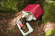 "Poor ""Leave No Trace"" habits on the the side a Sawyer River Trail in the White Mountains, New Hampshire USA"