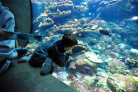 Dec. 30, 2009 - San Francisco, California, USA -A boy reaches out to fish and other creatures on display in the huge aquarium at the California California Academy of Sciences Natural History Museum in San Francisco Wednesday December 30, 2009.  (Photo by Alan Greth)
