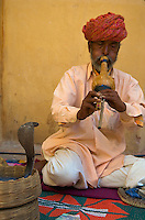 Snake Charmer at the Amber Fort Jaipur, Rajasthan India