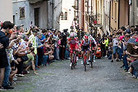 Thomas de Gendt (BEL/Lotto-Soudal) & co. up the steep, cobbled & crowded climb in Pinerolo<br /> <br /> Stage 12: Cuneo to Pinerolo (158km)<br /> 102nd Giro d'Italia 2019<br /> <br /> ©kramon