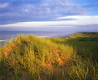Cape Cod National Seashore, MA <br /> Dune Grasses in evening light on the cliffs above Marconi Beach overlooking the Atlantic Ocean