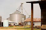 April 20, 2016. Rowland, North Carolina. <br />  The grain storage bins on Bo Stone's 2300 acre farm.<br />  Bo Stone, age 44, runs a 2300 acre farm near the South Carolina border. After 5 generations of tobacco farming, Stone helped to move his family farm over to corn, wheat, soybeans, and strawberries 7 years ago. <br />  While his corn crop is entirely made up of stacked genetically modified strains of corn, Stone says he chose the varieties primarily for their yield characteristics, but having the ability to utilize their herbicide tolerant traits if a weed gets out of control is &quot;another tool in my toolbox&quot;.