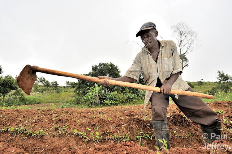 A man hoes his field in the Haitian village of Foret des Pins.